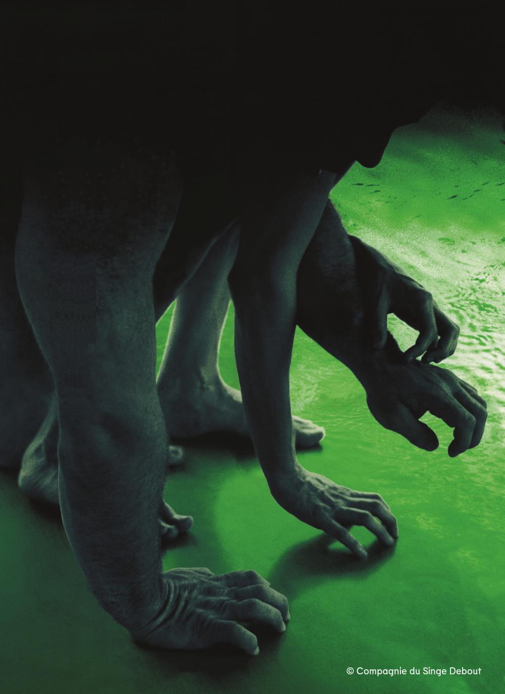 Penser avec l'animal - © Reine Blanche